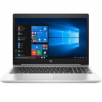 Ноутбук HP ProBook 450 G6 6MR17EA серебристый 15.6""